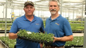 AmericanHort Names New Board Members and Officers for 2017