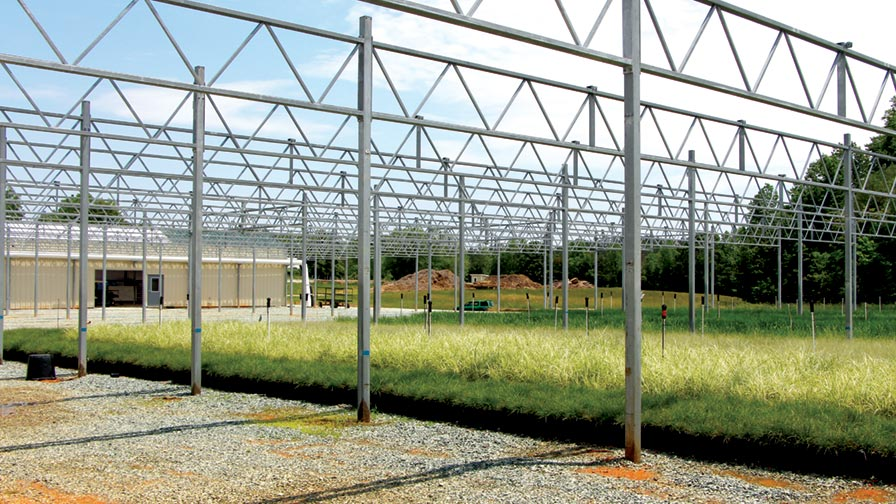 How hoffman nursery invests in technology in response to - Increase greenhouse production cost free trick ...