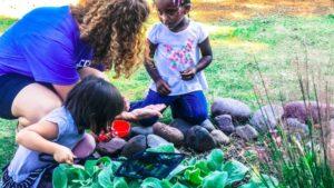 National Garden Bureau Announces Horticulture Therapy Garden Grant Winners