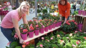 How To Make Your Plant Yard Easier To Shop