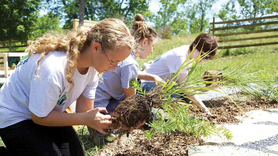 green plan it gardening outdoor nature explore classroom