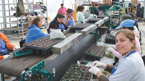 State of the Industry 2017: Growers are Ready to Invest to Alleviate Labor Pains