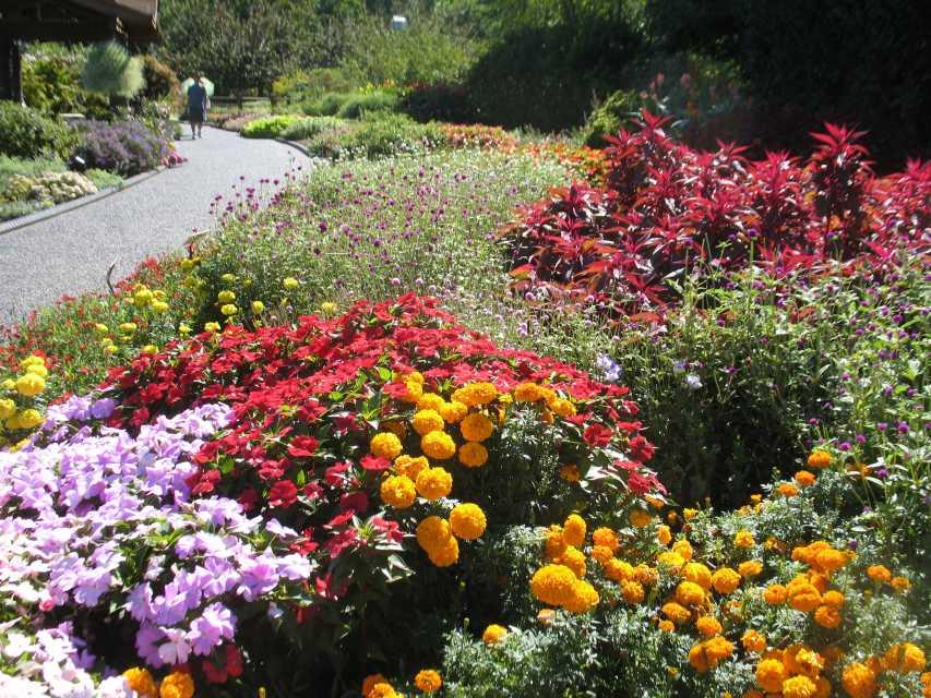 Missour Botanical Garden 2016 Field Trials