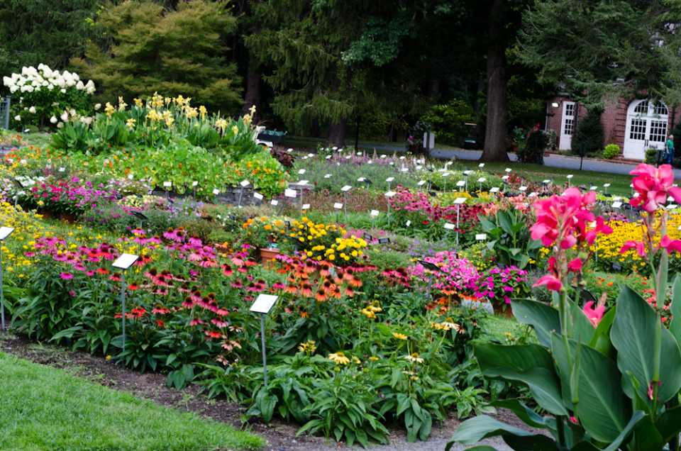 2016 Massachusetts Horticultural Society Field Trials