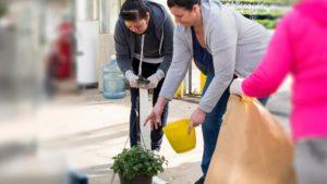 Oregon Nursery Lean Consortium Welcomes New Grower Members