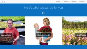 Van Belle Nursery Launches Improved Website