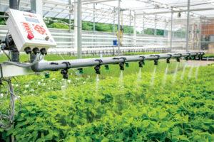 visser-irrigation-booms-with-damatex-controls-at-north-creek