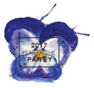 year-of-the-pansy