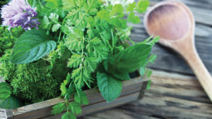 Are You Growing or Considering Growing Culinary Herbs? If So, This Survey Is for You