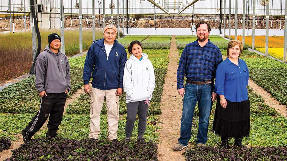 Bailey Nurseries Team