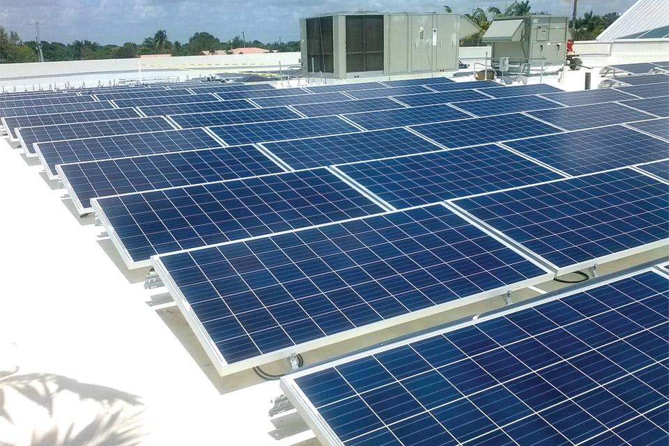 costa-farms-corp-solar-pv-panels-2
