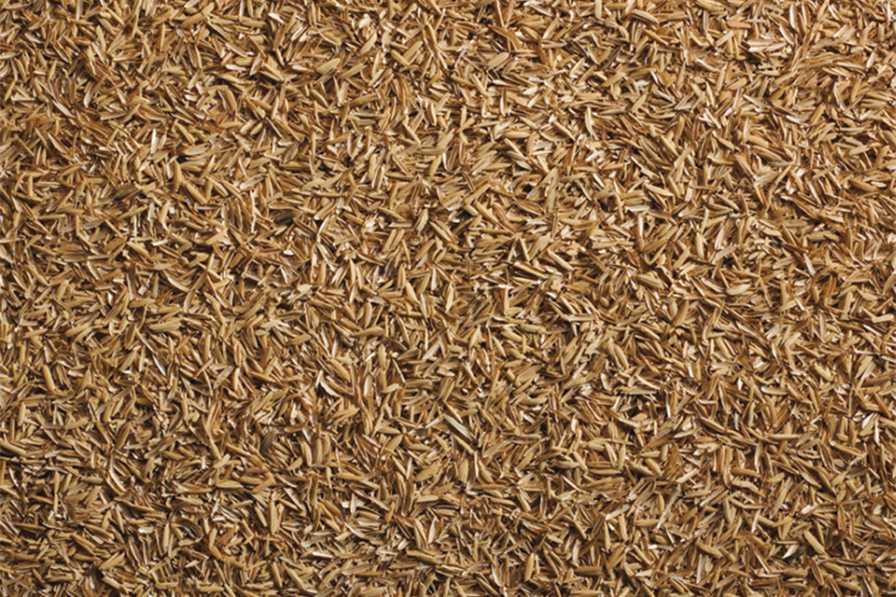 pbh-natures-media-amendment-riceland-foods-rice-hull