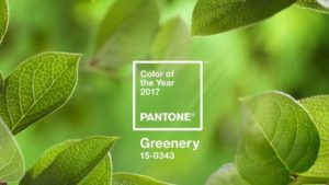 How To Merchandise Plants With Pantone's 2017 Color Of The Year