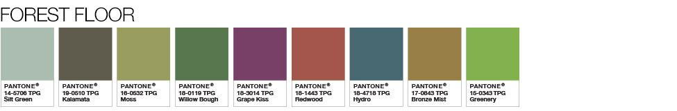 pantone-forest-floor-color-palette