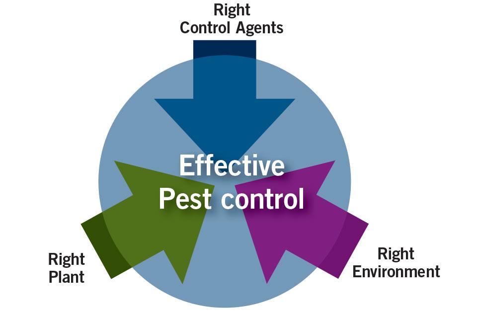 Effective pest control diagram