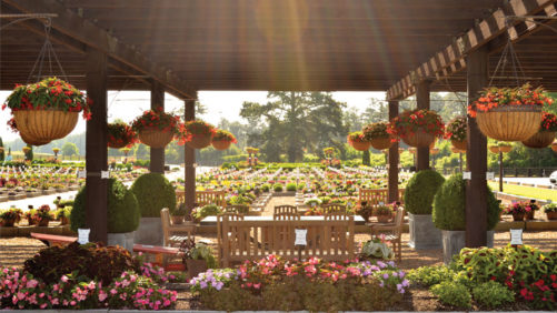 Don't Miss the Southern Garden Tour This June