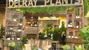 Delray Plants TPIE 2017 booth