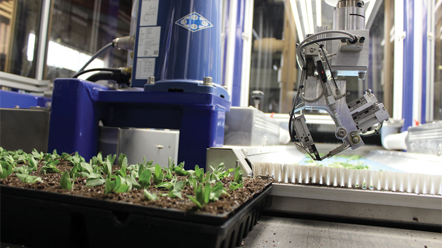 Getting To The Next Generation Of Greenhouse Automation