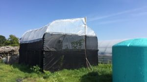 NVAC Greenhouse prototype