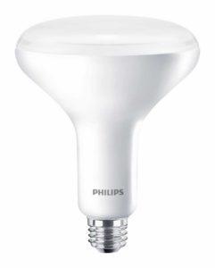 Philips Flowering Lamp