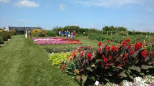 2016 University of Wisconsin Field Trials Results