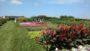 University of Wisconsin field trial gardens