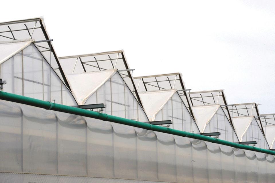 Apex Greenhouse (Westbrook Greenhouse Systems Ltd.)