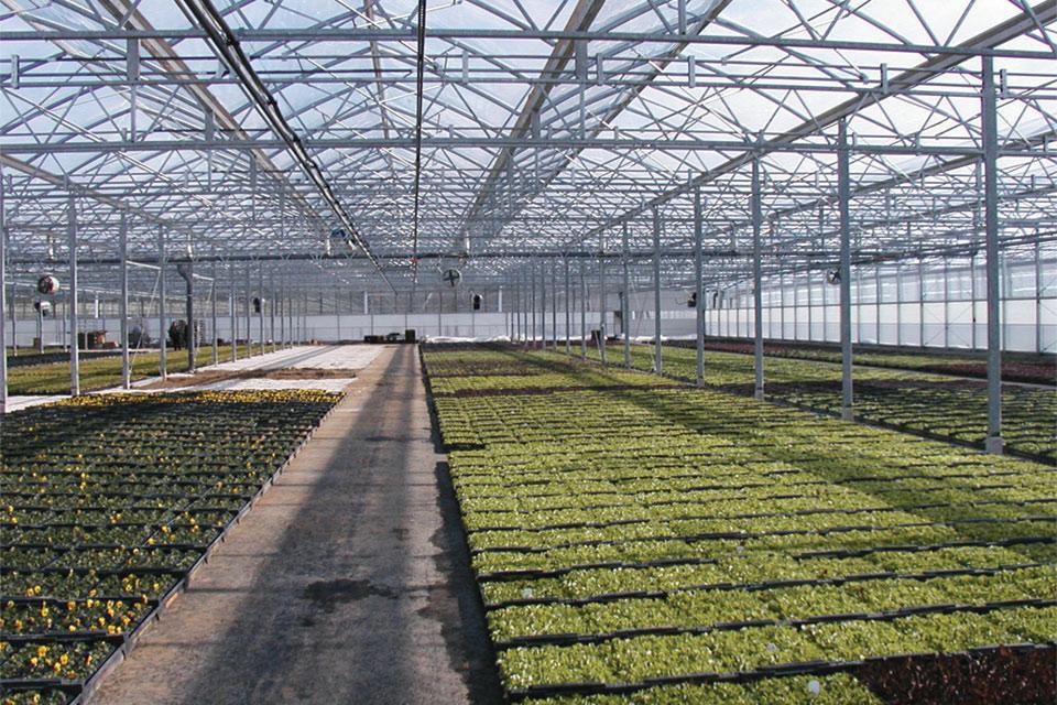 F-Clean Greenhouse Film (AGC Chemicals Americas)