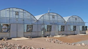 New Greenhouse Structure Models Emphasize Crop Protection, Energy Efficiency