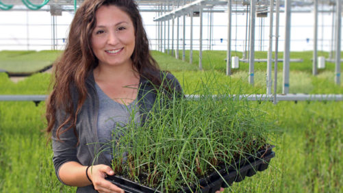 New Horticulturist At Hoffman Nursery Will Focus On Developing New And Better Products