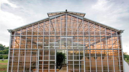 The Latest in Greenhouse Coverings Technology