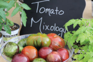 Tomato Mixology Collection (Hort Couture)