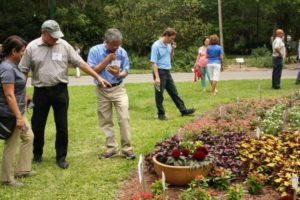 Florida Flower Trials