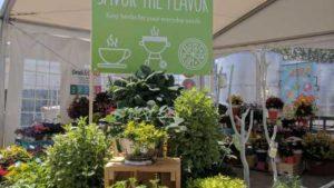 Dümmen Orange Provides Retail Concepts; Terra Nova Offers Solutions; Kientzler Gearing Up