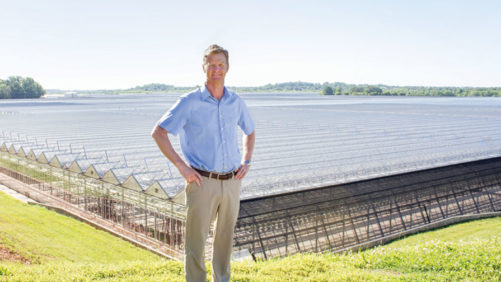 Art VanWingerden on the Importance of Investing in Your Greenhouse Structure