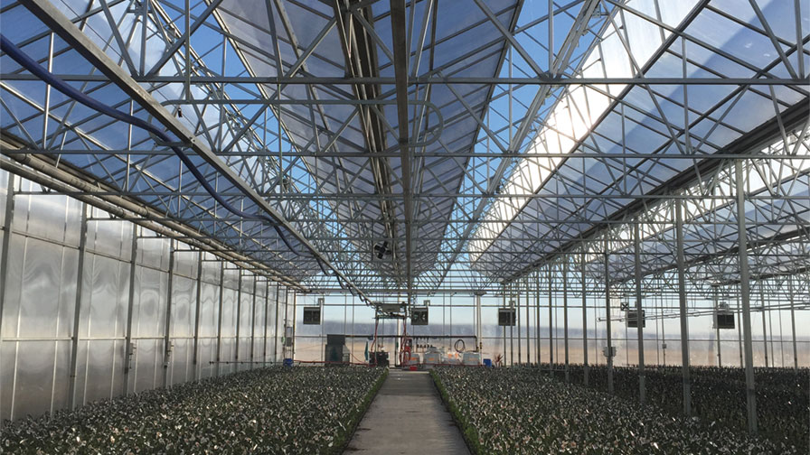 Growers offer advice on what to know before your next building project greenhouse grower Factors to consider before building a conservatory
