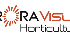 Orora Visual Logo