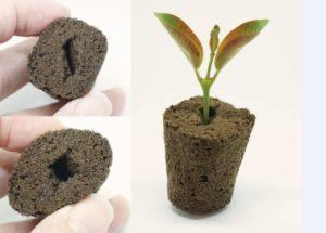 GrowTech CatEye Plug
