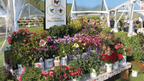 Why Consumers Buy Pollinator-Friendly Plants (And Why They Don't)