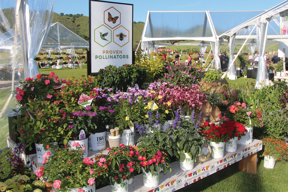 Proven Pollinators Display from Proven Winners