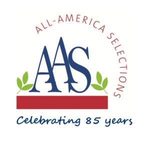 AAS 85th Anniversary logo