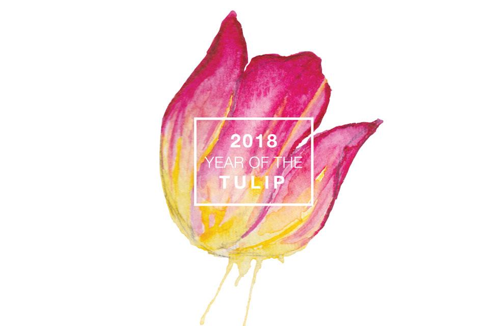 National Garden Bureau 2018 Year of the Tulip
