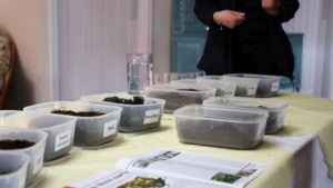British Researchers Evaluating New Media Blends to Reduce Coir Reliance