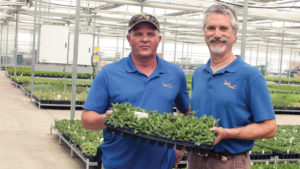 North Creek Nurseries Head Grower and Owner