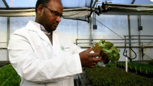 Oasis Grower Solutions Hosting Plant Production Webinar