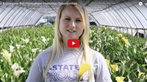 Looking to Host an Intern This Year? Consider AFE's Scholarship Program