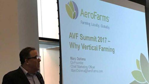 Vertical Farming Looks to Go Mainstream