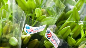 Certified American Grown Flowers Names New Third-Party Certifier