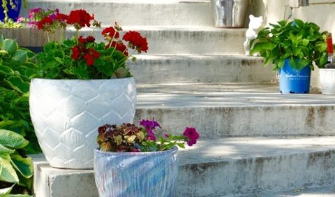 14 Consumer Gardening Trends That Have Stood the Test of Time