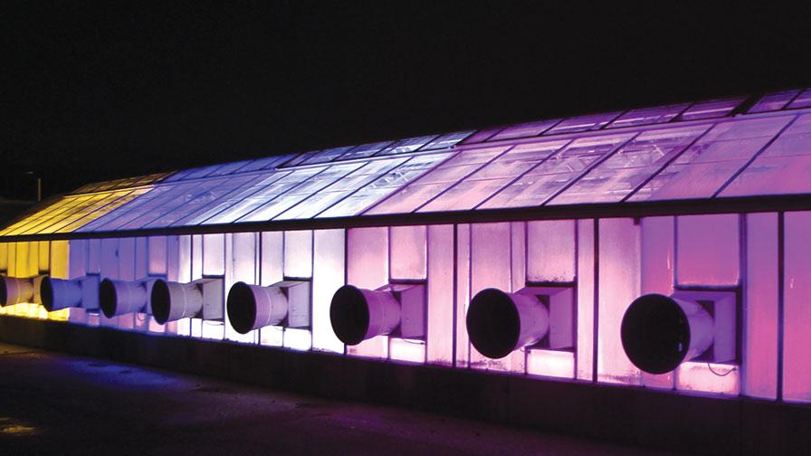 light green house supplemental greenhouse lighting to produce seedlings led or hps